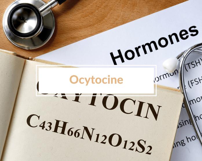 L'influence de l'ocytocine dans l'allaitement (et qui t'aide à devenir un meilleur parent et une personne plus heureuse)