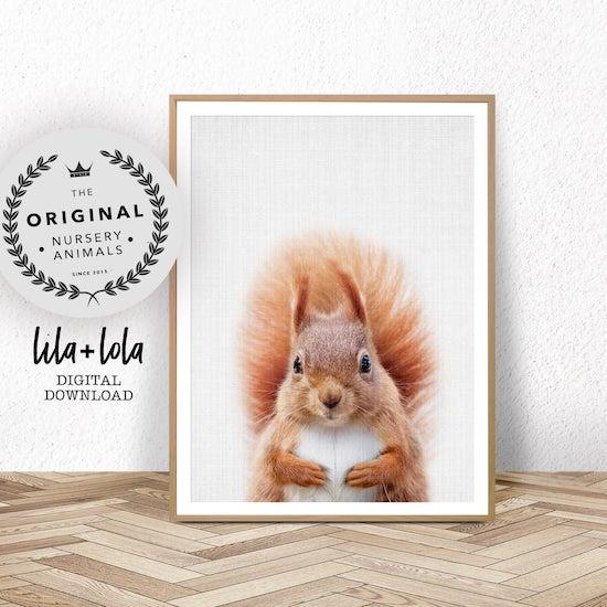 Affiche d'un écureuil pour décorer une chambre de bébé - Créatrice ETSY : LILAxLOLA