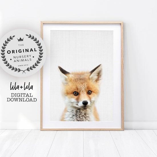 Affiche d'un renardeau pour décorer une chambre de bébé - Créatrice ETSY : LILAxLOLA
