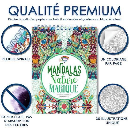 Cadeaux à offrir à la maternité : le livre de Coloriage Adultes Mandalas Anti-Stress Nature Magique