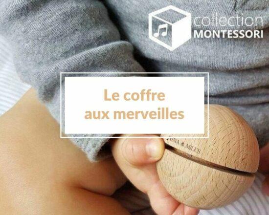 Read more about the article Boutique Le coffre aux merveilles : concept-store éthique et engagé pour offrir le meilleur à nos enfants